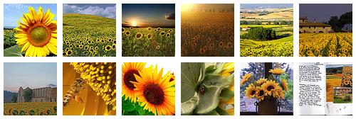 Schermata 2010-07-27 a 10.36.39