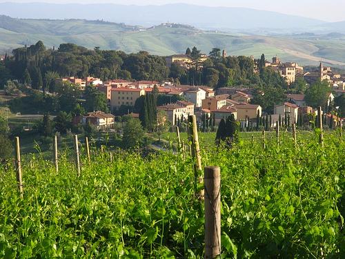 Castelnuovo Berardenga by Jim Budd