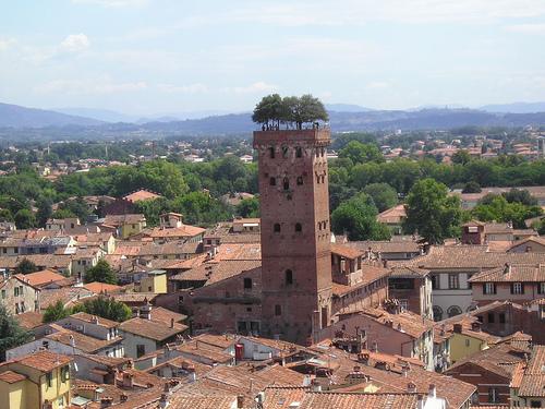 Torre Guinigi - Lucca