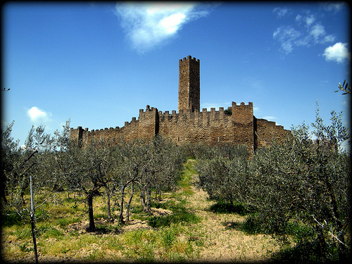 Castle of Montecchio