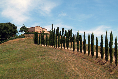 Tuscan houses by Giovanni