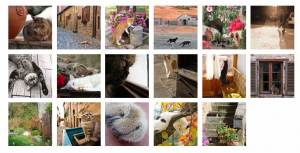 Schermata 2010-11-08 a 12.20.39