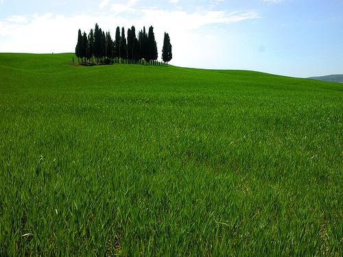 Toscana.1