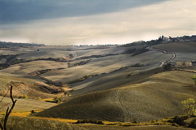 Accona_Desert_tuscany