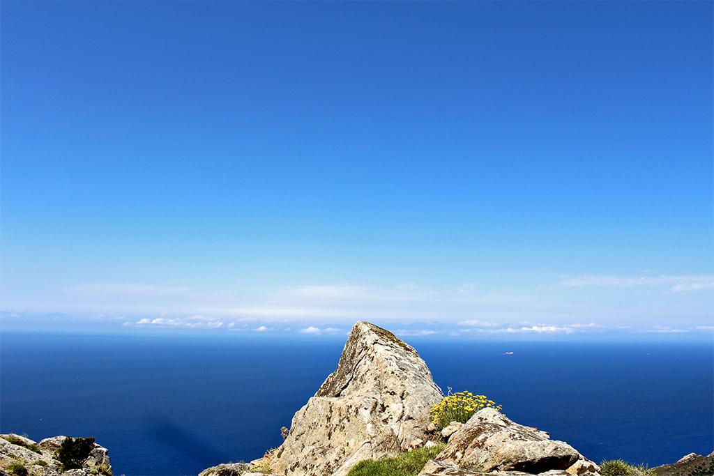 elba_island