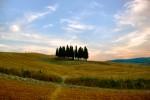 Around Montepulciano [Photo Credits: Giampaolo Macorig]
