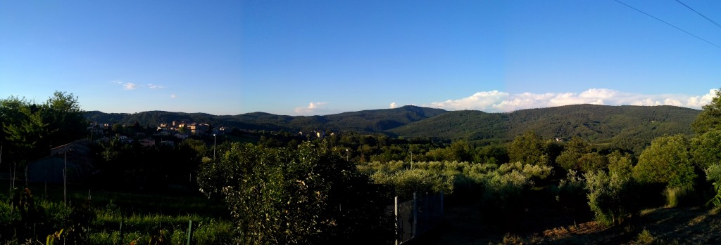 Panorama with a blue sky
