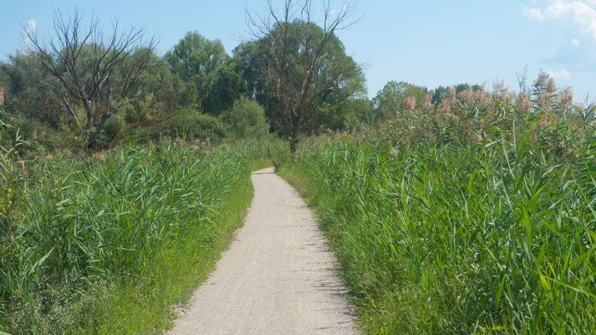 The Sentiero della Bonifica cycleway