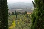 landscape_pienza