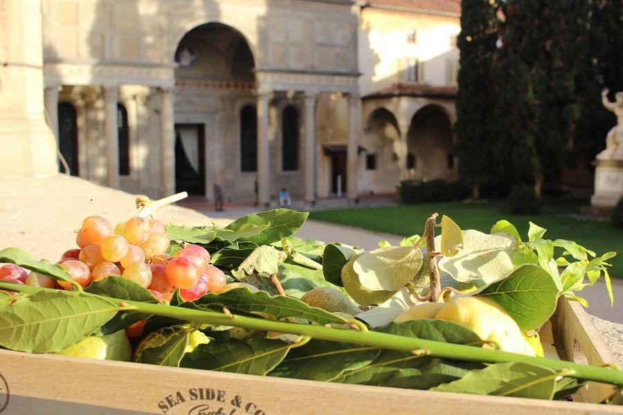 fruits-leaves-table-setting