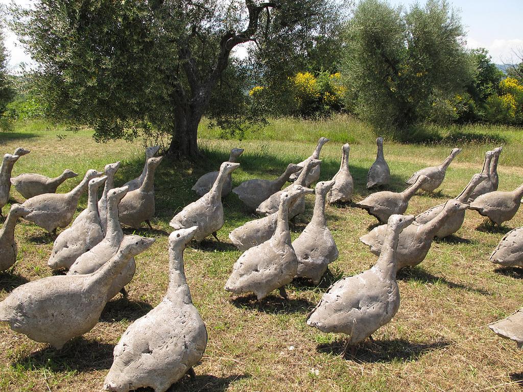 In gita al giardino di daniel spoerri sul monte amiata - Il giardino di ausonia ...