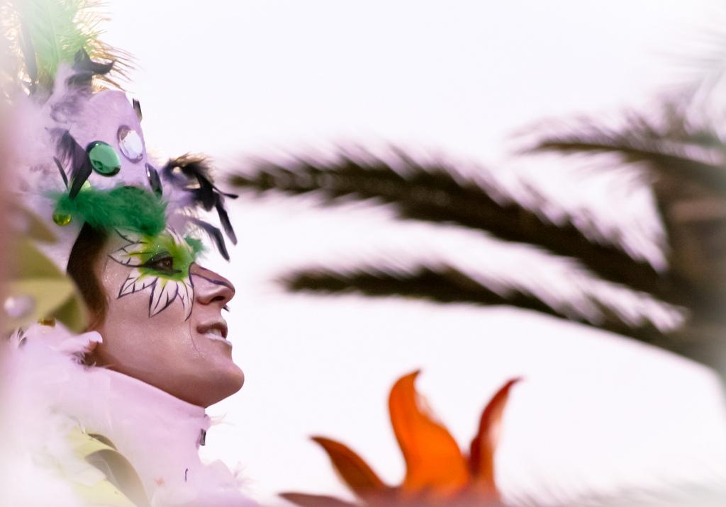 L'allegria del Carnevale di Viareggio [Photo Credits: cludiovizzoni bit.ly/WNWpkn]