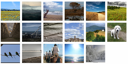 Maremma photo gallery on Tuscany Arts's Flickr!
