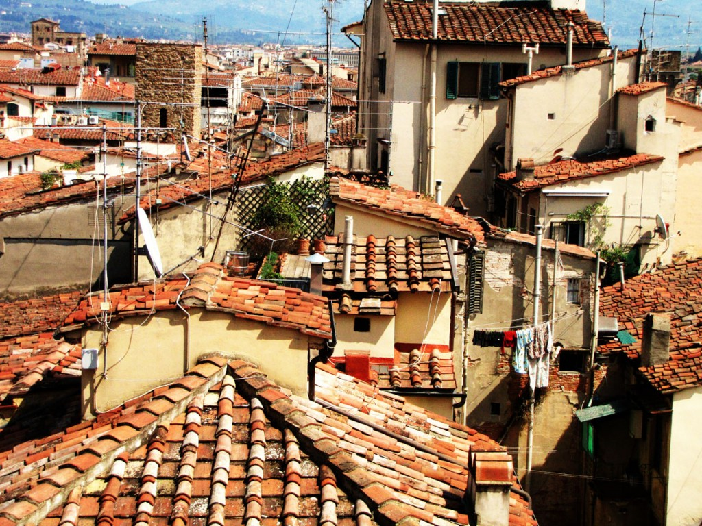 florence-roofs1