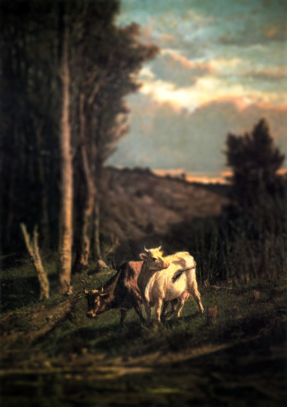 tivoli-serafino-a-pasture-tilt