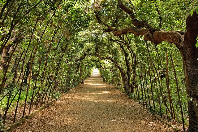 Boboli gardens facts florence tuscany arts art for Jardines espectaculares