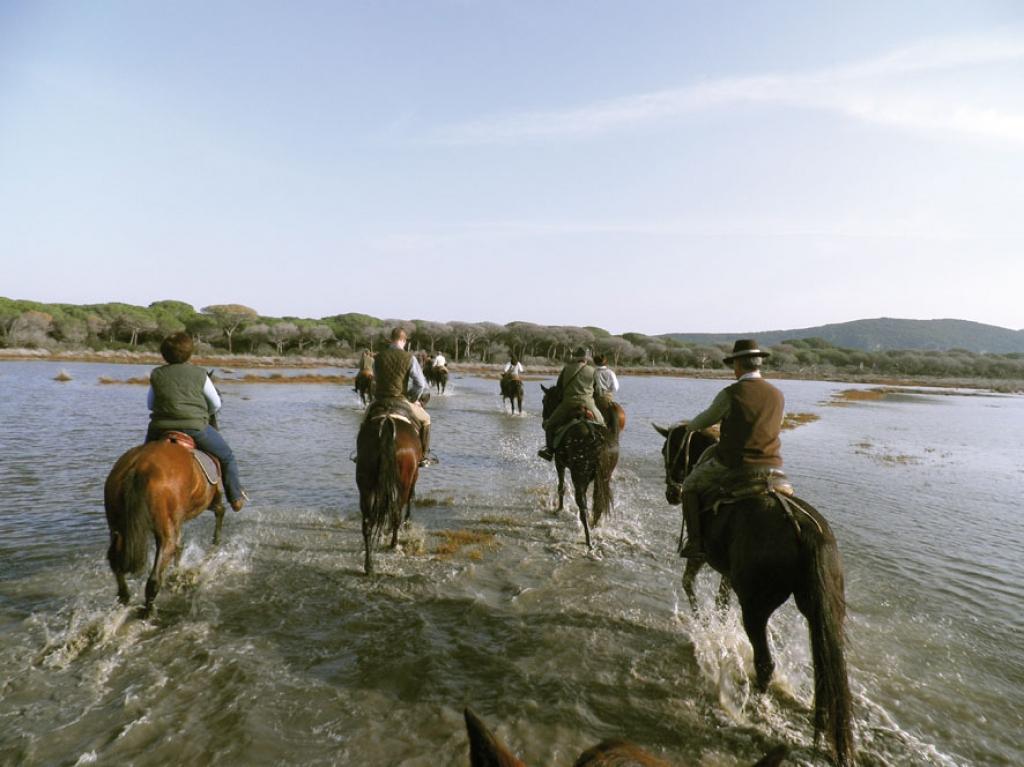 horse via clodia