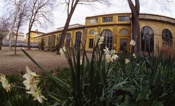 botanical garden florence
