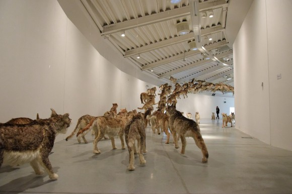 """Head on"" by Cai Guo-Qiang"