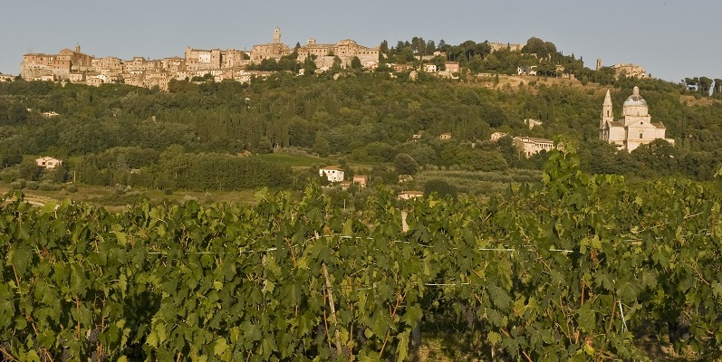 montepulciano_slide