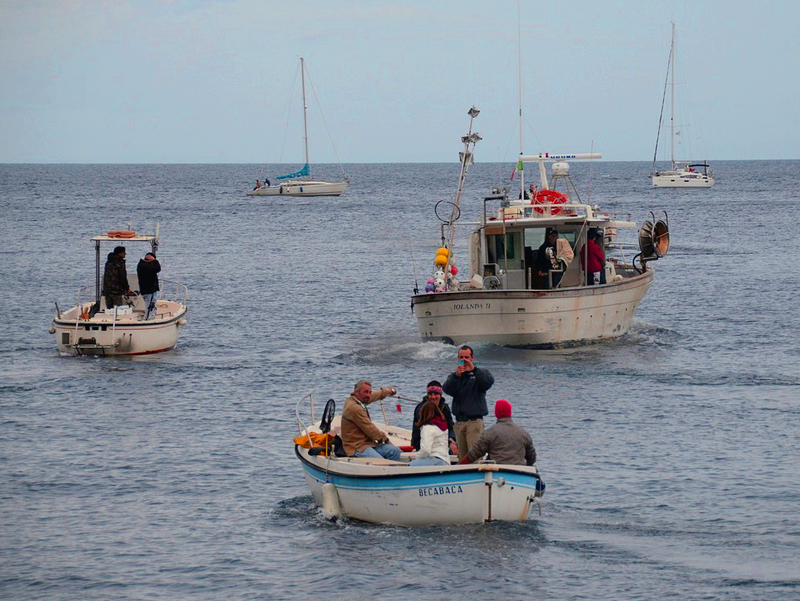 Fishing competition at the Squid fest [Photo credits: Fabio Guidi]