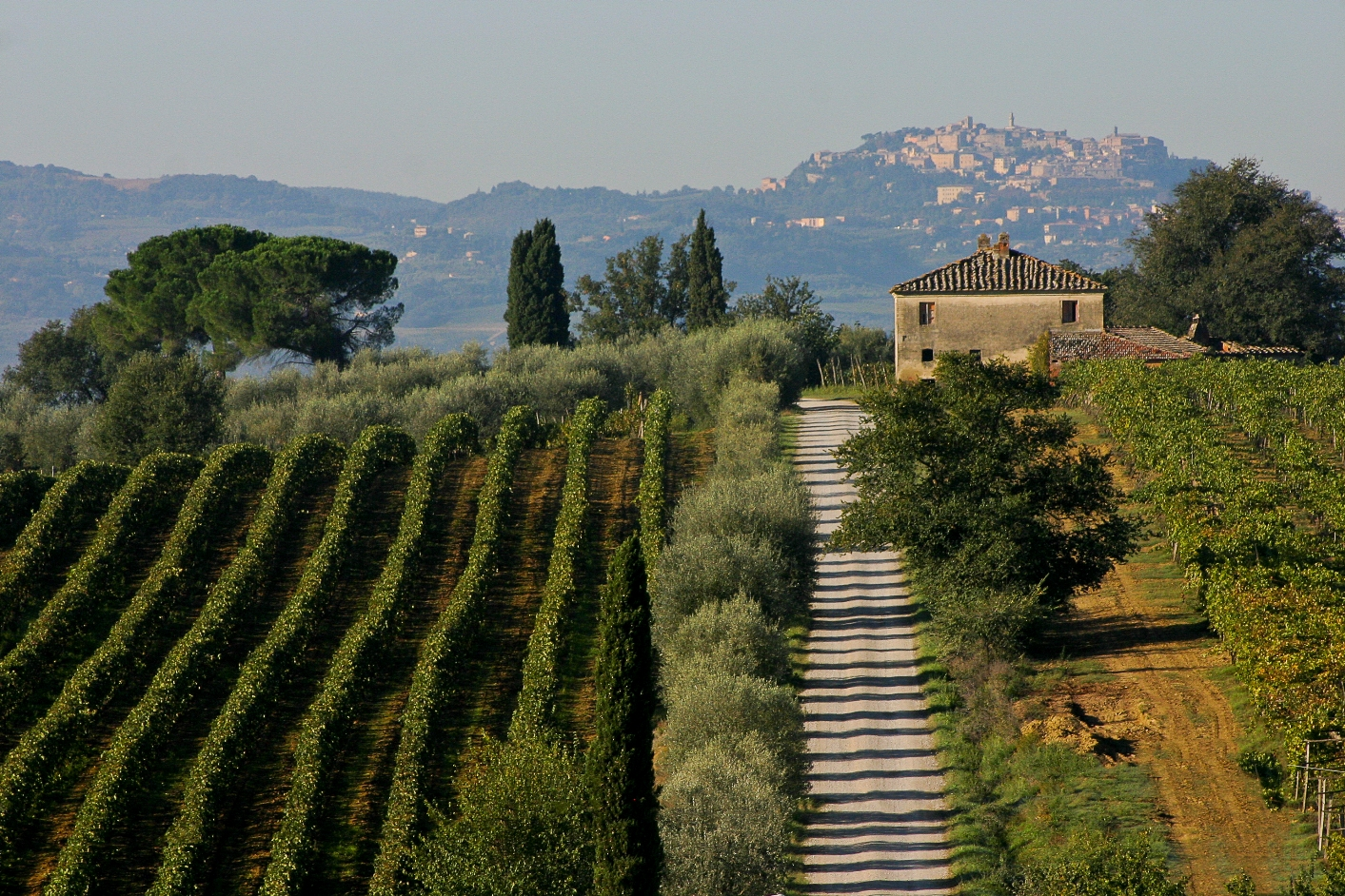 6 ways to experience wine in tuscany tuscanycious for Montepulciano italy