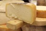 pecorino_cheese