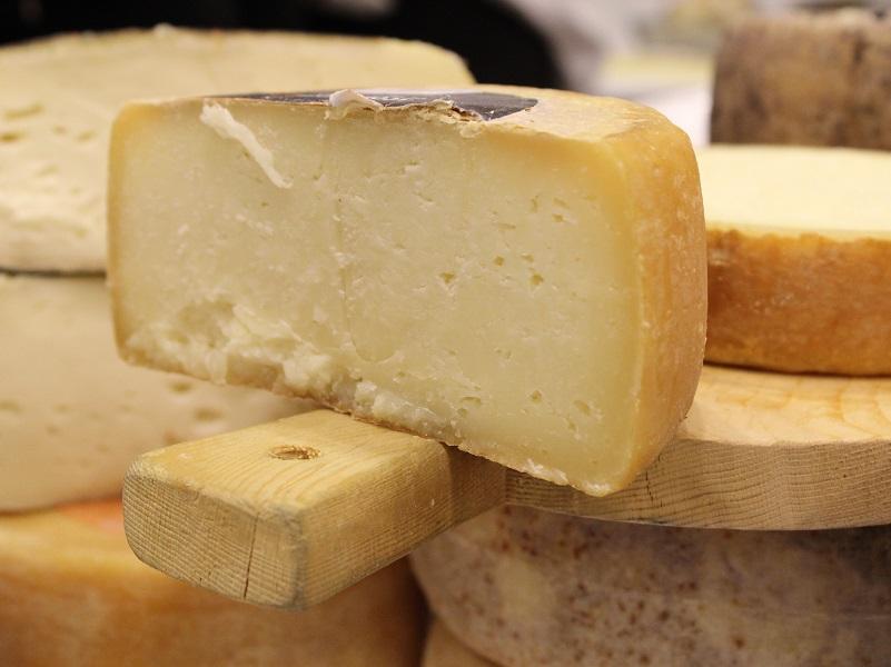 Pecorino cheese, photo taken at Terre di Toscana exhibit