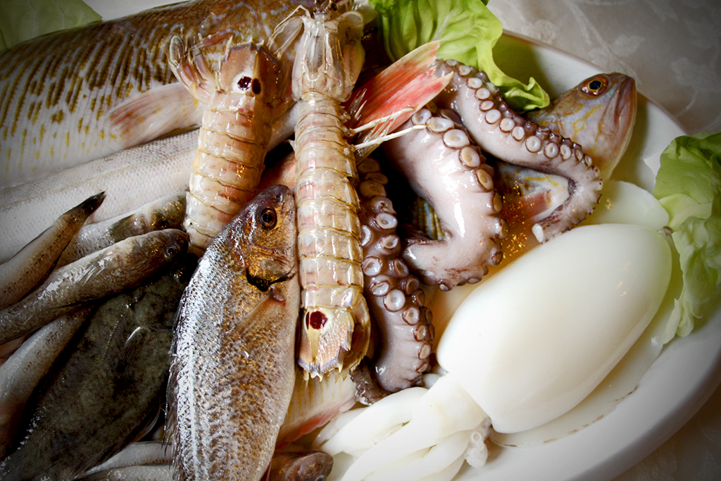 Fish and seafood for the Cacciucco soup