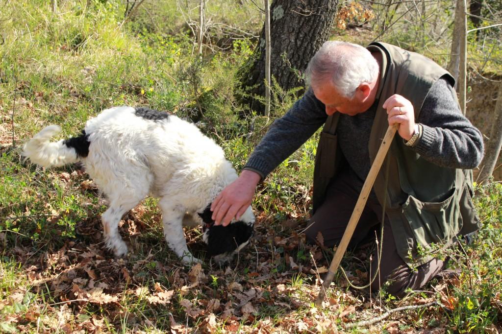 hunting_truffles