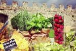 vegetarian_cover