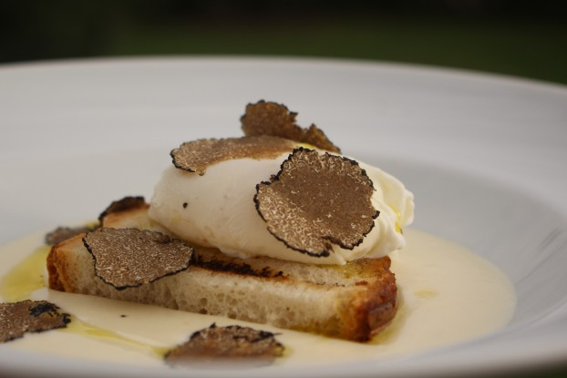 poched-egg-black-truffle