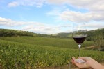 wine-tasting-camperchi