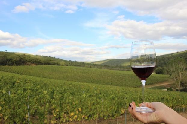 wine-tasting-camperchi